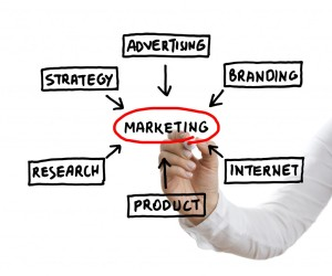 Small Business Marketing Consultant