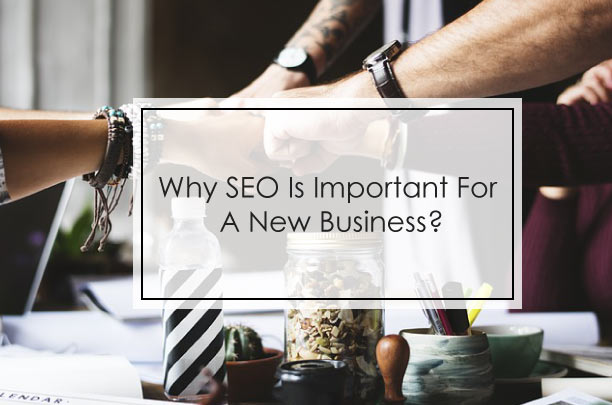 Why SEO Is Important For A New Business?