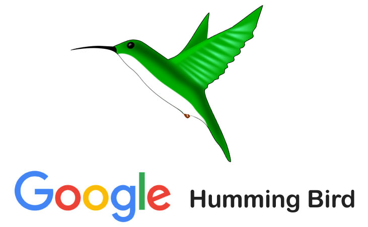 Effects Of Google Hummingbird Update To Local SEO